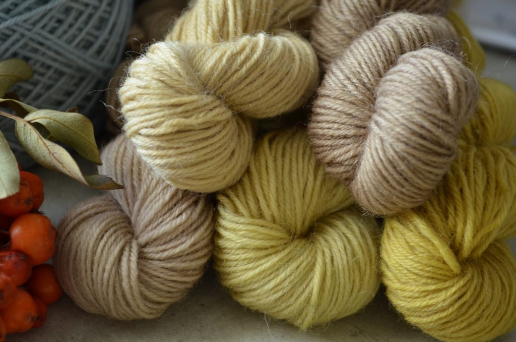 Sock yarn dyed with different mushrooms (boletes and polypores) and a type of lichen (using the boiling method)