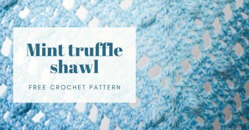 mint truffle shawl cover photo